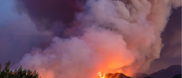 Incendi, la Protezione Civile lancia l'allarme a causa del caldo